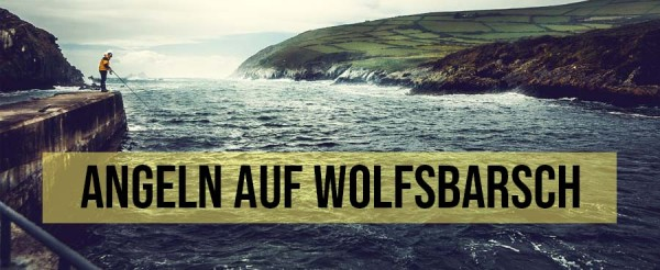 Wolfsbarsch-Brandungsangeln-Angeln-Ostsee-Mittelmeer-Frankreich-England-Irland-Rezept-Filet-Meeresr-uber-Loup-de-Mer-Sea-Bass-Header-Titelbild