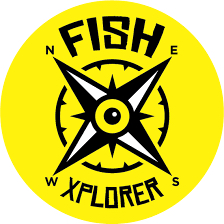FishXplorer