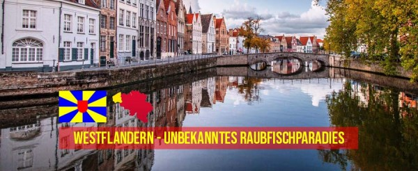Westflandern-Raubfischparadies-Belgien-Angeln-Raubfisch-polder-Polderkan-le-Poldergr-ben-Header-Titelbild_finallZFThS4HyI87Q