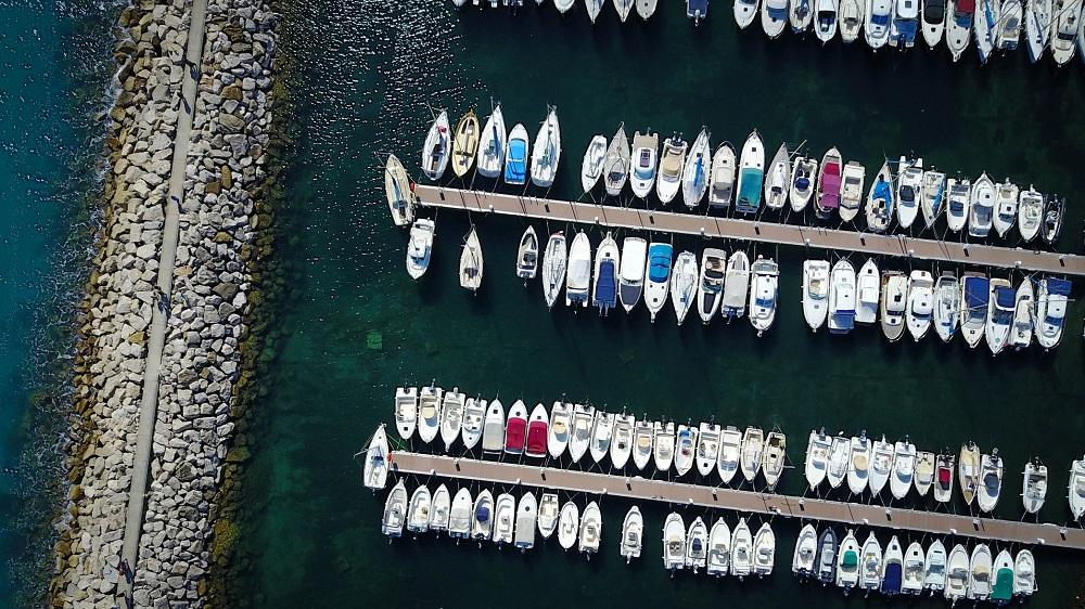 Hafen-Frankreich-Wolfsbarsch