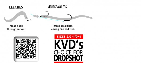 dropshot-hooks-graphics11-600x269