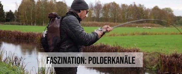 Header-Polderkan-le-Holland-Hecht-Polderhecht-YouTube-Predator-Cup-YPC-2018-18-Tobias-Ekvall-Kanalgratis-Dustin-Sch-ne-BATV-Barsch-Alarm-TV-Fangfoto-Titelbild-Polder-Holland