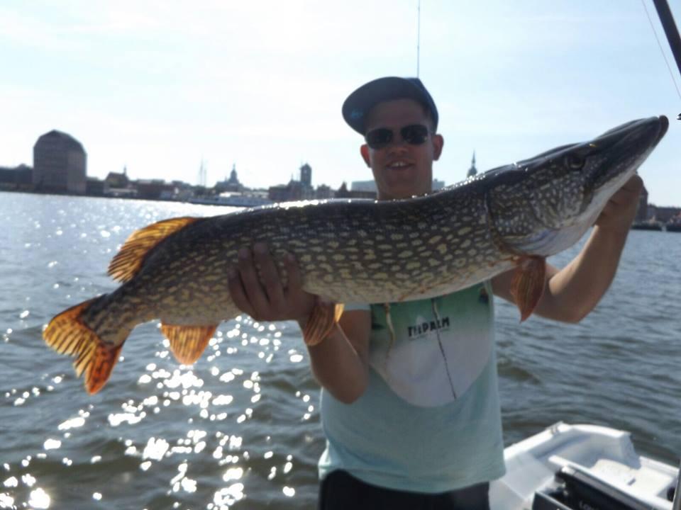 Mit 1,03m der größte Fisch der Summer Tour 2015, gefangen von André Tolwinski