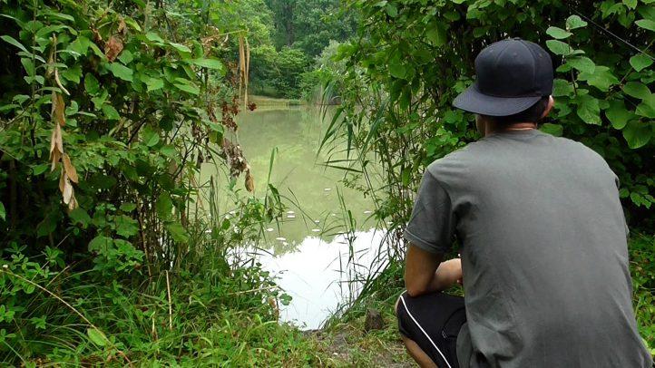 Beim Angeln mit Schwimmbrot auf Sicht ist das Beobachten der Wasseroberfläche ein elementarer Bestandteil