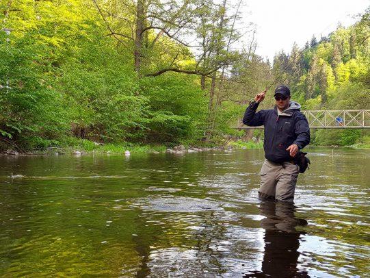 Der Einstieg ins Fliegenfischen ist allein wegen des spannenden Drills lohnenswert