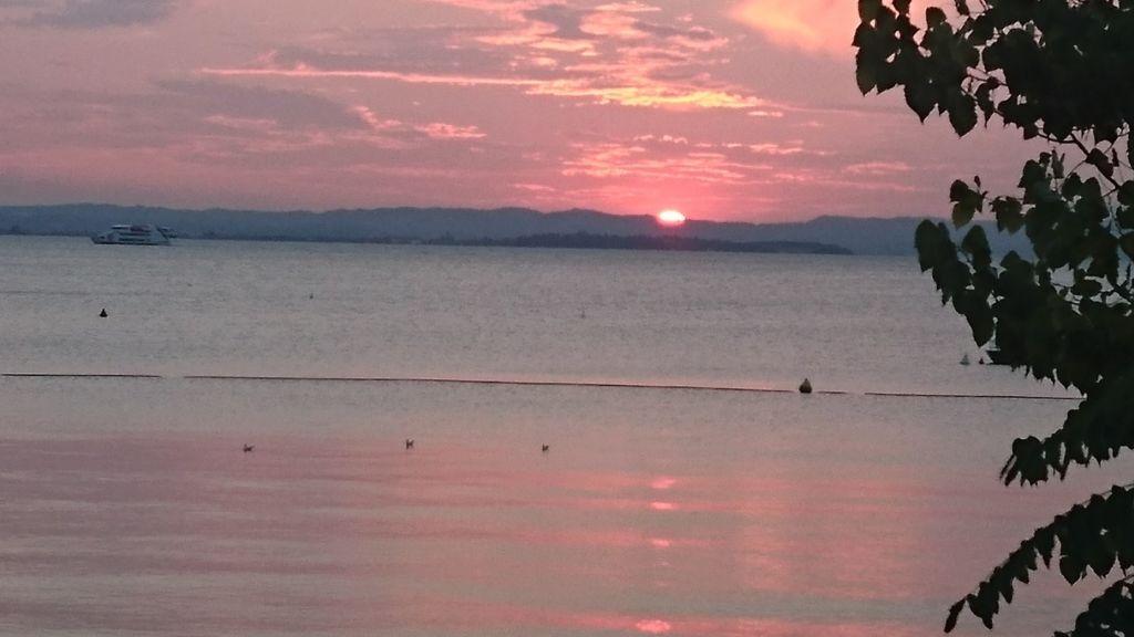 Eine Stunde nach Sonnenuntergang ist die Rute spätestens einzupacken, wenn es nicht auf Aal geht