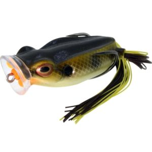 river2sea-spittin-wa-15-bream