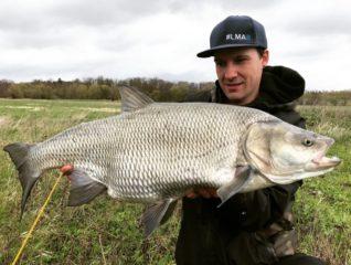 Rapfen angeln - Eine Leidenschaft